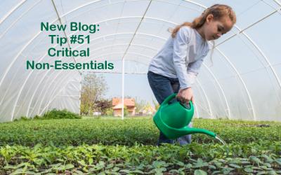 Tip #51 – Critical non essentials