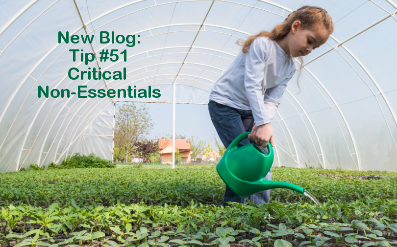 Tip #51 – Critical non essentials
